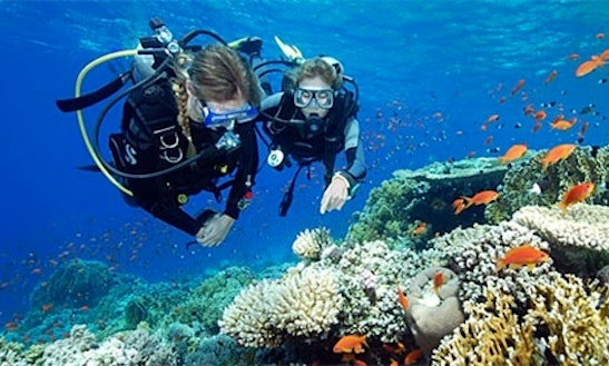 62' Diving Trips And Courses In Girne, Cyprus
