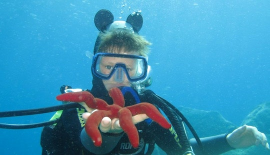 Diving Trips And Courses In Villasimius, Italy