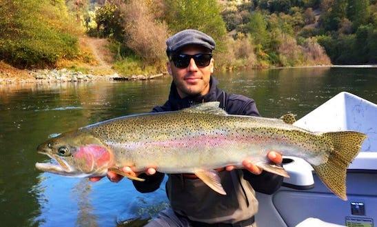 Guided Fishing In Lewiston, California