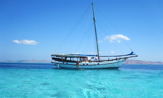 Komodo - Diving & Snorkeling Liveaboard With Lambo
