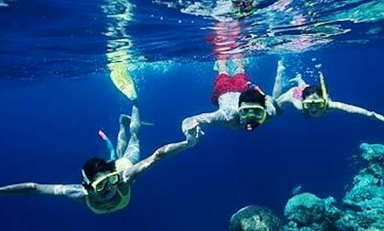 Snorkeling Tour In Tavuki