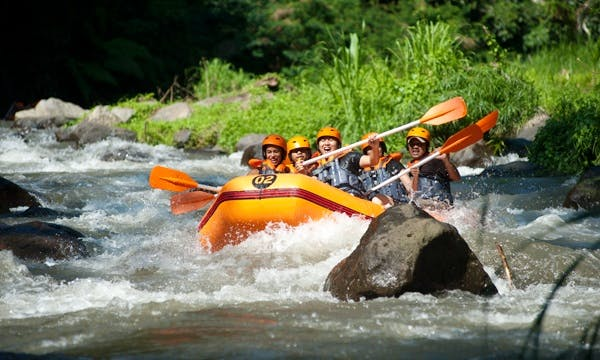 Book Exciting Rafting Tours in Ubud, Bali