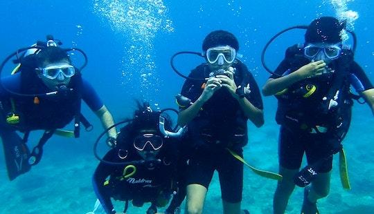 Enjoy Wonderful Marine Life Of Tambon Patong, Thailand