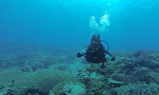 Admire Some Of Indonesia's Best Dive Sites With Certified Coaches!