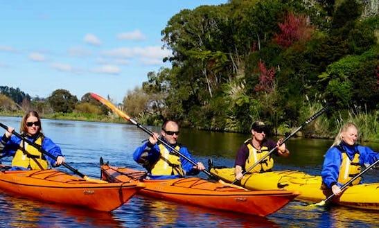 Single Kayak Scenic Lake Mclaren Tour In Tauranga