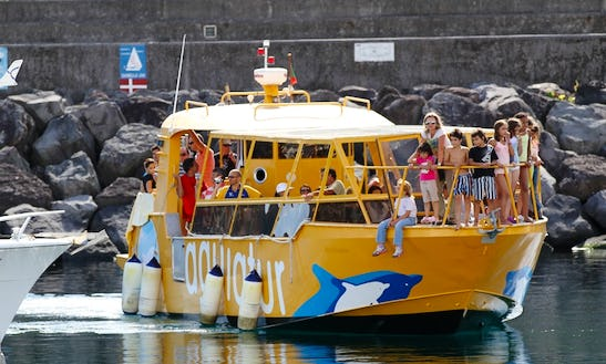 Boat Excursions On Azores Islands