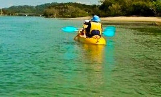 Kayak Rental & Trips In Tampa, Florida