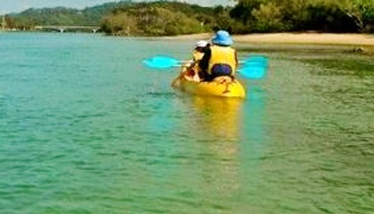 Kayak Rental & Trips In Tampa, Florida