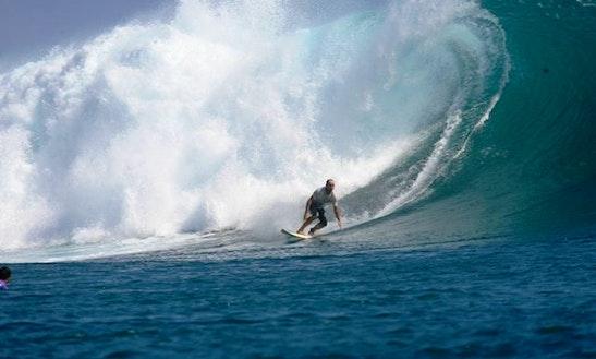 Nexus - Surf - Florianópolis / Sc