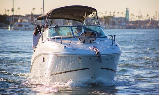 2013 Charter 27' Sea Ray Motor Yacht Rental In Newport Beach, California