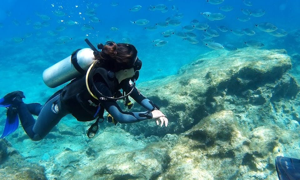 Diving Trips and Courses in Larnaka, Cyprus