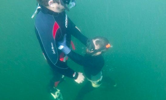 Free Diving Courses In Chatswood, Australia