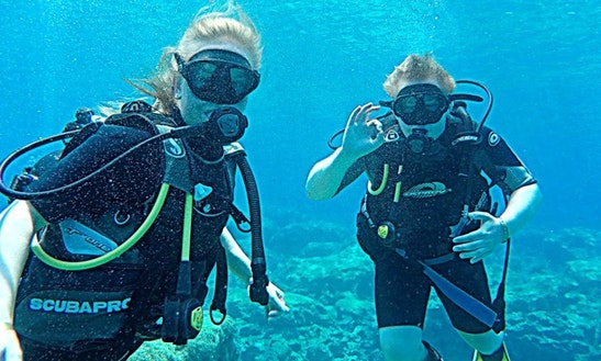 Diving Trips And Courses For Certified And Novice Divers In Paralimni, Cyprus