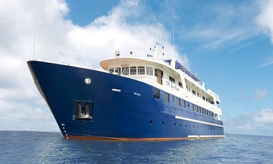 Blue Manta Charter In Pulo Gadung