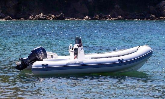 Predator 540 Boat Rental In Campo, Italy