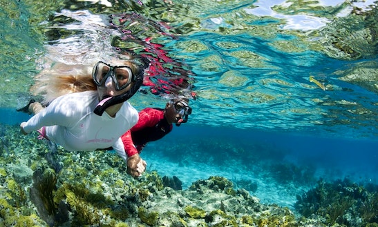 Snorkeling Trips In Centola