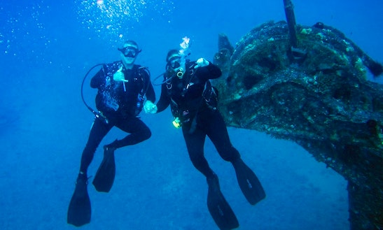 Scuba Diving Lessons And Tours In Haleiwa
