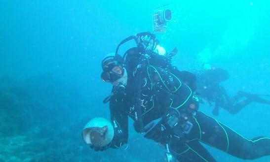 Diving Trips In Santa Teresa Di Gallura