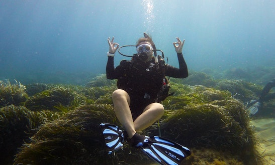 Diving Trips And Courses In Peyia