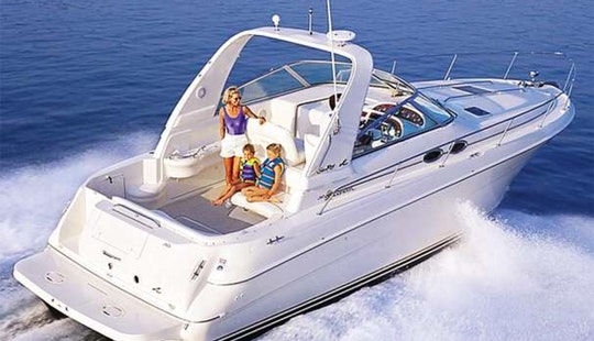 31' Searay 310 Sundancer Motor Yacht For Rent In North Miami