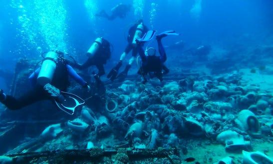 Diving Trips In Redditch, United Kingdom