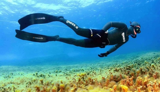 Free Diving Lessons In Il-munxar