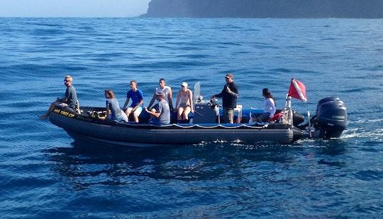 27′ Rib Diving Trips In Waimea, Kauai, Hawaii