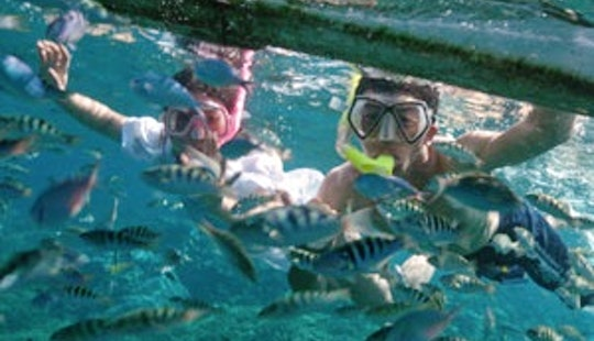 Snorkeling In Lembongan Island
