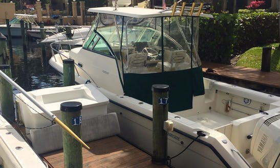 30' Cuddy Cabin Charter In Palm Beach Gardens, Florida