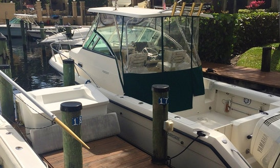 30' Cuddy Cabin Charter In Palm Beach Gardens, Florida