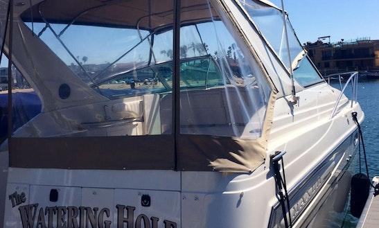 32ft Maxium Motor Yacht Sleep-aboard In Newport Beach