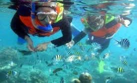 A Fun Snorkeling Tour in Kuta Selatan, Indonesia