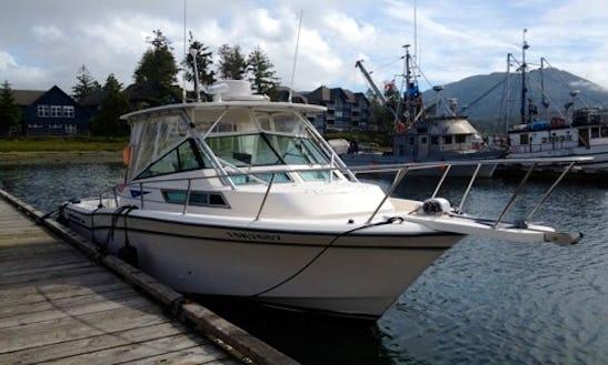 28' Grady White Marlin Fishing Charter In Ucluelet