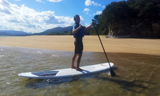 Paddleboard Courses And Rental In Ibarrangelu