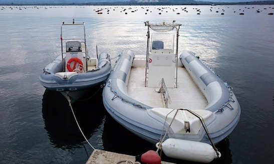 Rib Diving Trips & Courses In San Teodoro