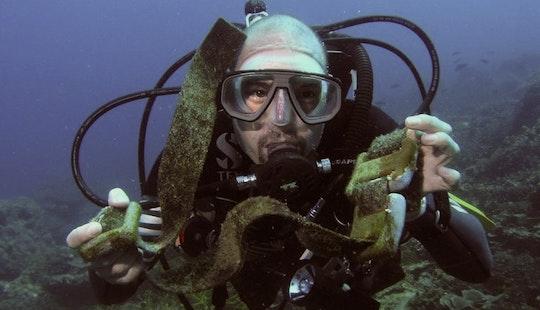 Diving Tours In Mersing