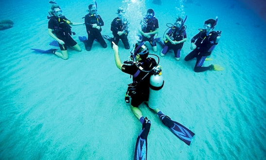 Diving Tours And Dive Training For Beginner And Certified Divers In Vietnam