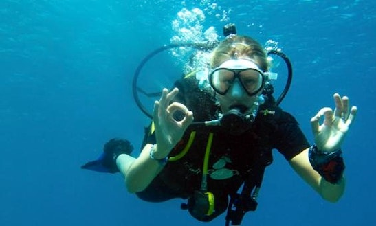 Diving Trips And Courses In Malé
