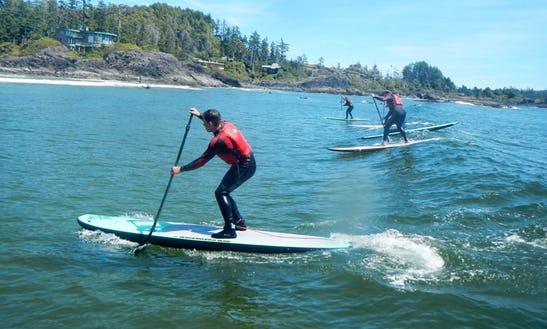 Stand Up Paddleboarding Hire In United Kingdom