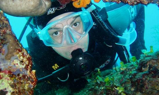 Diving Trips In Šibenik, Croatia