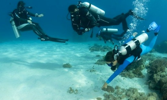 Diving Trips In Komodo