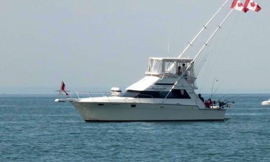 40' Luhrs Tournament Flybridge Fishing Charter In Mississauga