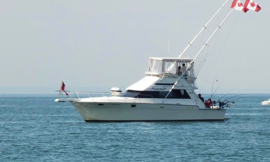 40' Luhrs Tournament Flybridge Fishing Charter In Mississauga