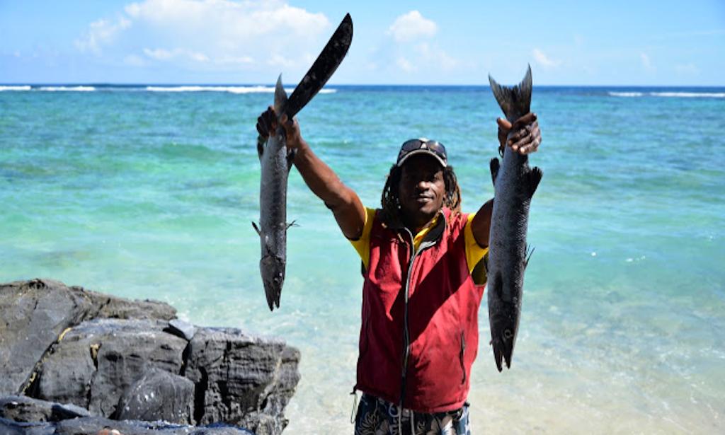 Fishing trips in las galeras dominican republic getmyboat for Dominican republic fishing
