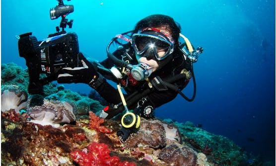 Diving cousres in Hsinchu