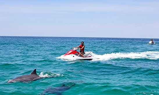 Jet Ski Dolphin Tour In Fort Myers Beach