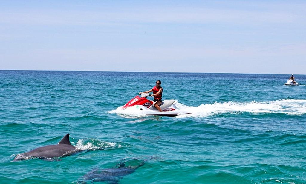 Destin Jet Ski Dolphin Tours