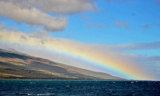Eco Tours In Kula, Hawaii