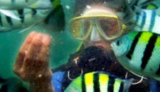 Diving Trips In Denpasar Utara