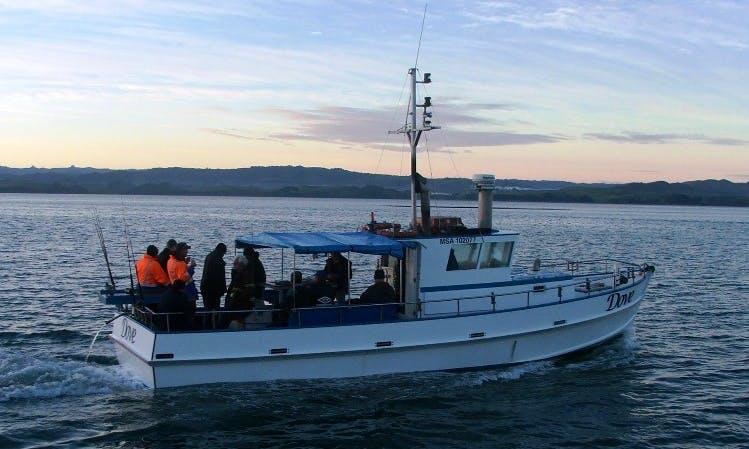 """Dove"" Head Boat fishing charter in Kawhia, New Zealand"